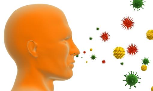 Экологическое обследование жилья: профилактика аллергии