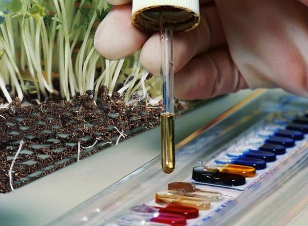 анализ почвы, грунта, донных отложений в СПб