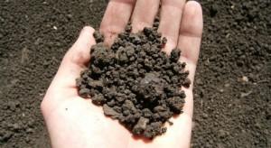 исследование почвы, земли в СПб