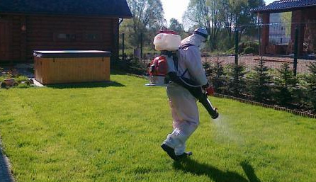 дезинсекция в СПб - уничтожение насекомых